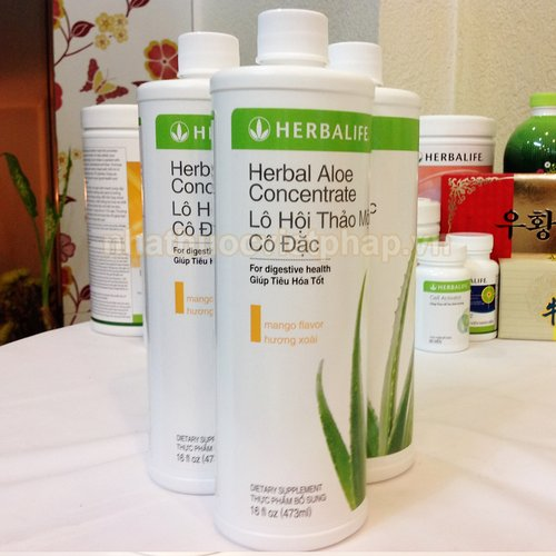 tra-lo-hoi-herbalife-aloe-contrate (4)