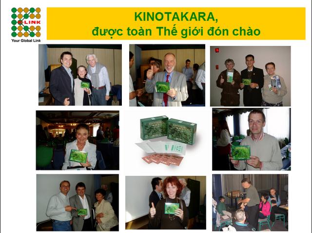 miếng dán kinotakara được thế giới đón chào