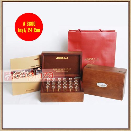dong-trung-ha-thao-a3800-24-con-500