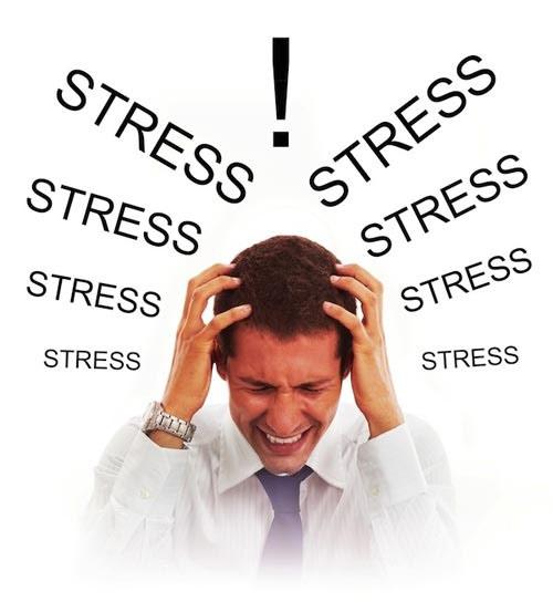 Bạn bị stress trong công việc