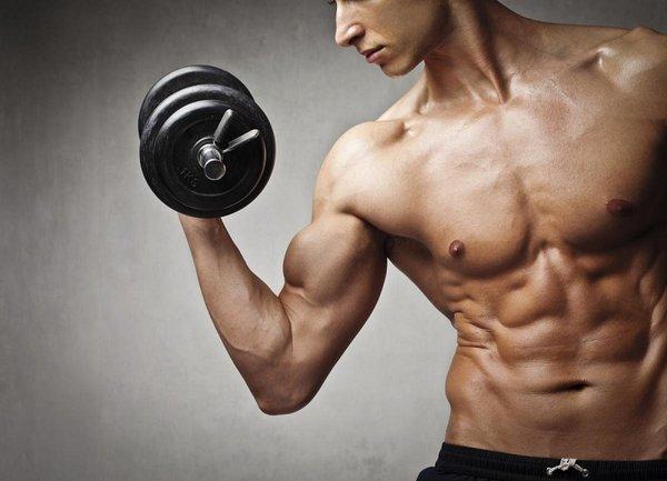Amino được xem là phương pháp tăng cơ hiệu quả